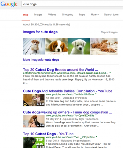 cute_dogs_-_Google_Search